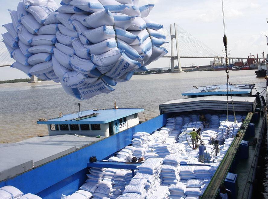 Chỉ trong 4 tháng, kim ngạch xuất khẩu gạo của Việt Nam vượt mốc 1 tỉ USD